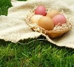 pasqua val venosta uova